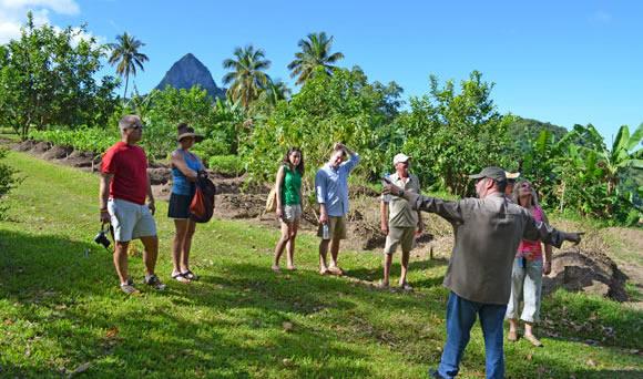 Chef Allen Susser on Farm Tour in of Emerald Estate