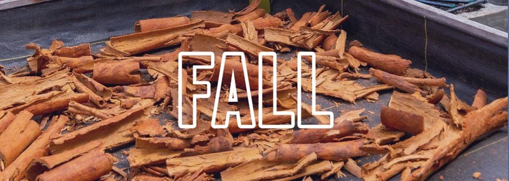 Fall Recipe Jade Mountain